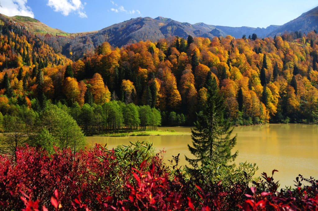 A colorful autumn view from Karagöl, in Artvin