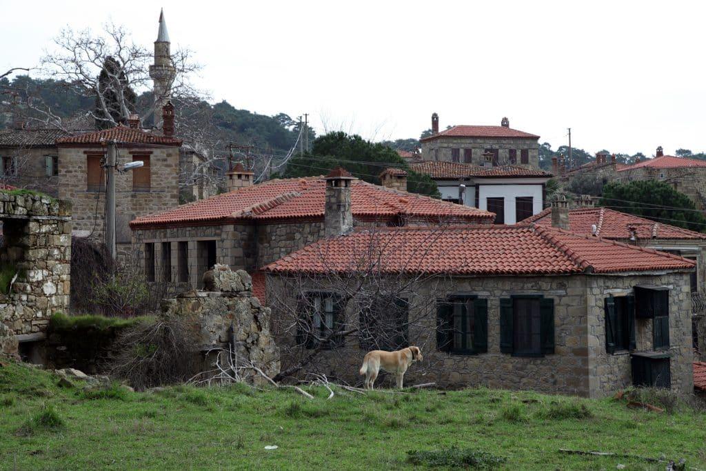 Adatepe Village of Mount Ida